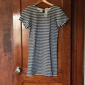 Black and white striped short-sleeved sheath dress